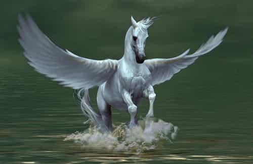 Pégase ou Pegasus