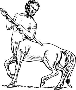 Un god de cheval la fait jouir 2 2